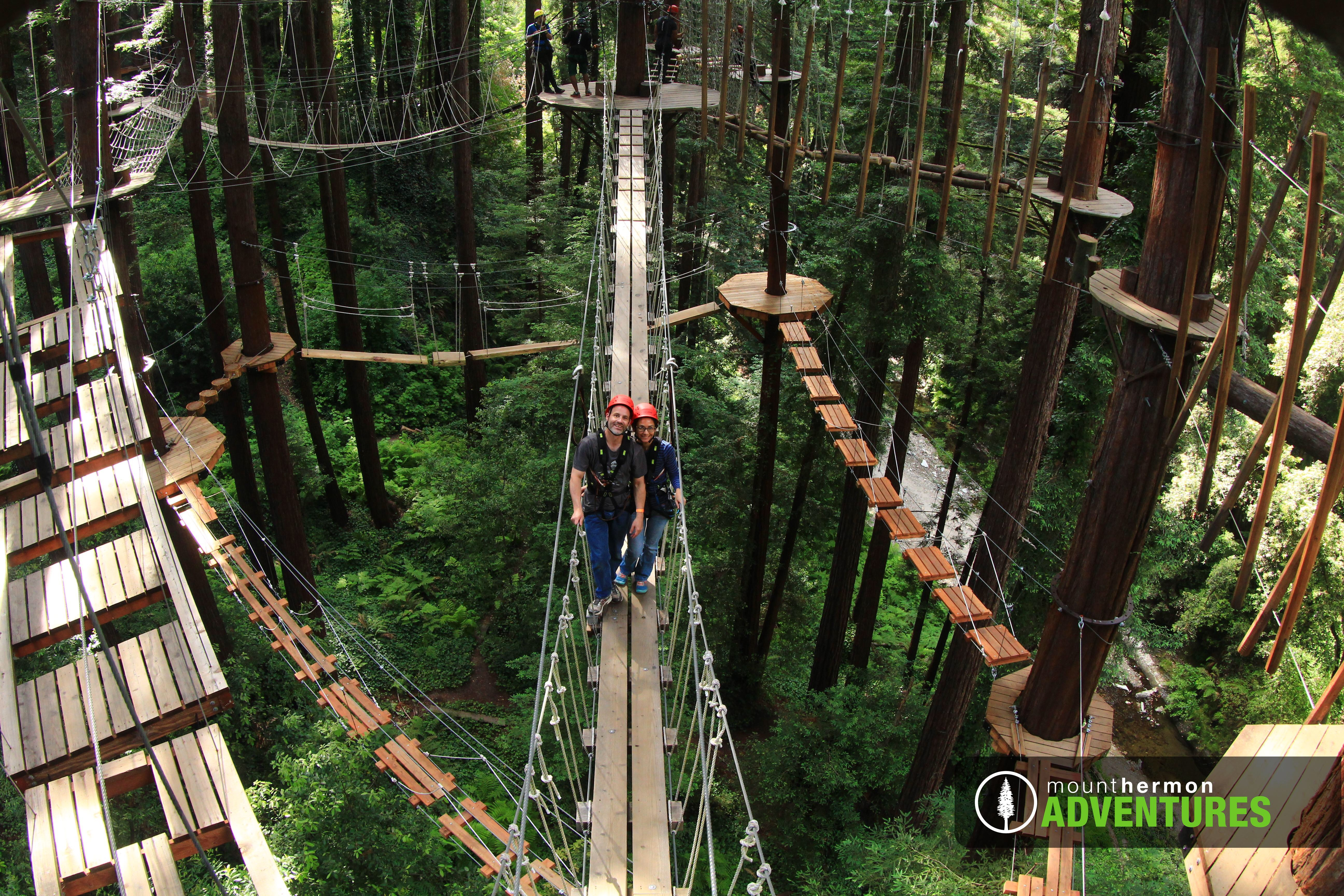 Juicer pulp muffins, a tree top adventure, and Bavarian dinner